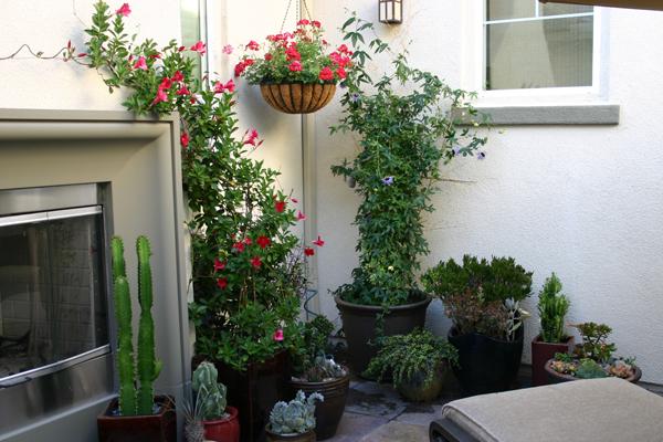 Courtyard-corner