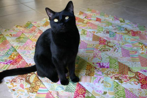 Raven-on-braid-quilt